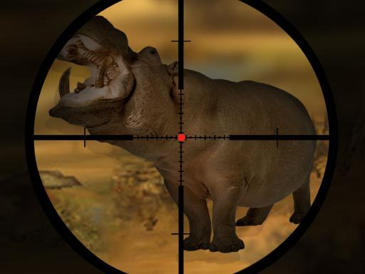Classical Hippo Hunting